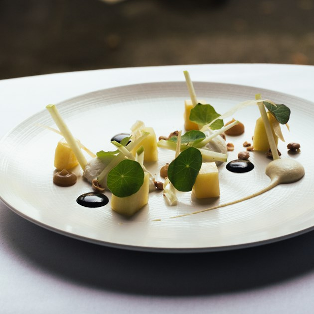 Delight your tastebuds with this delectable goats curd starter.